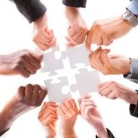 Cooperative e Consorzi